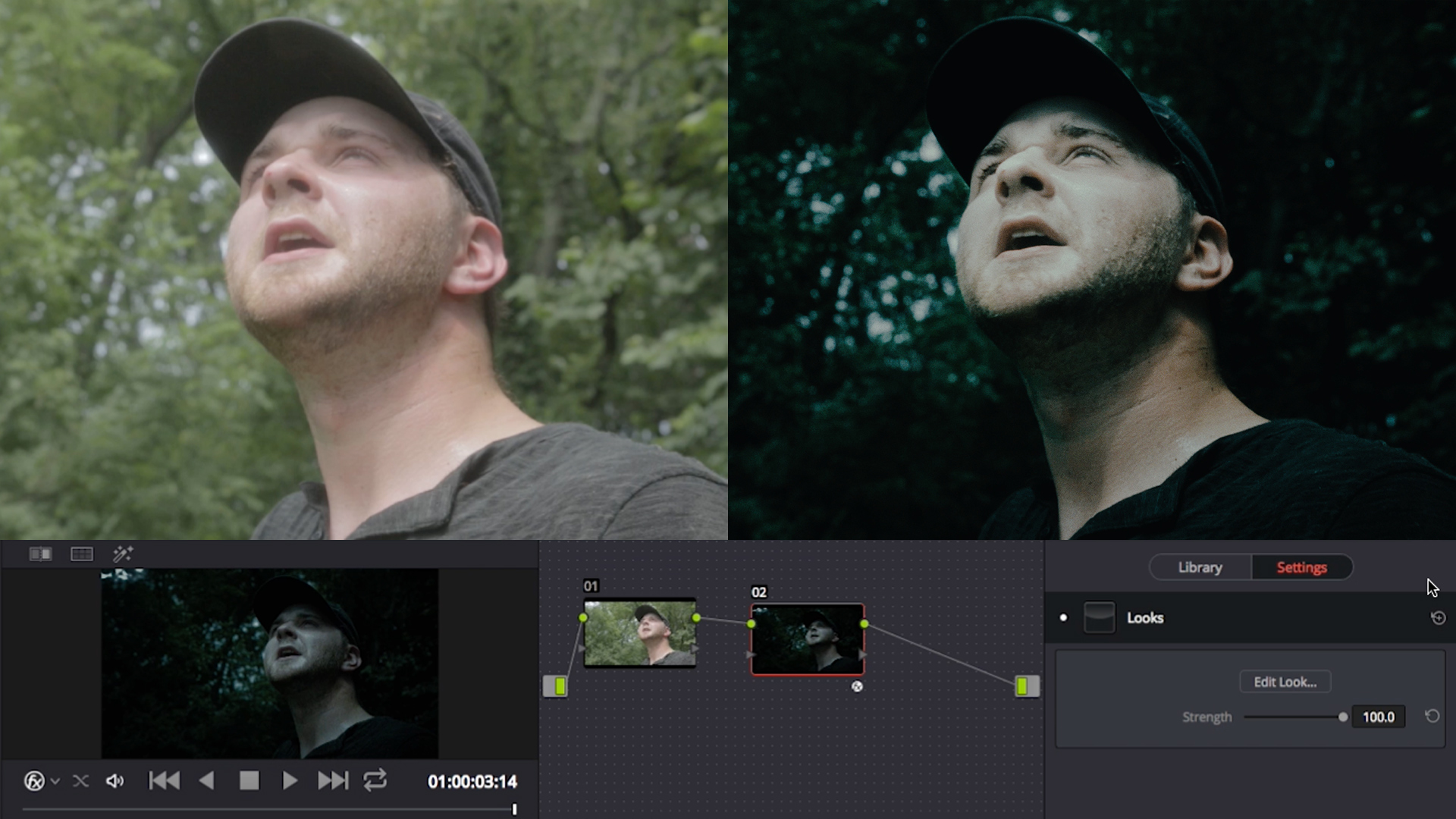 Red Giant | Getting Started with Magic Bullet Looks in