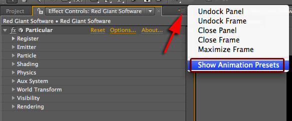 My Animation Presets in After Effects are not appearing