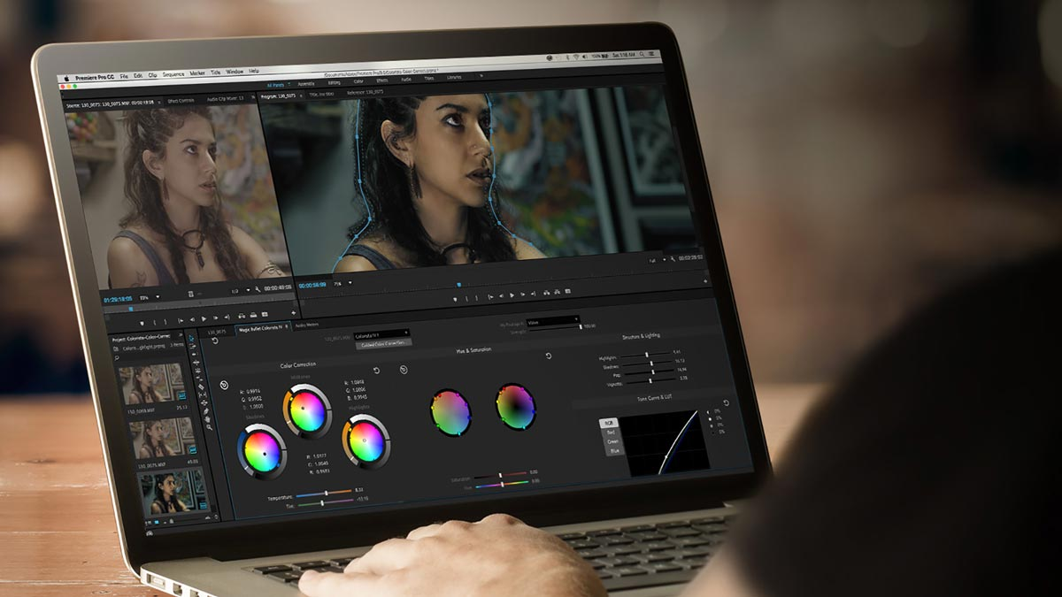Magic Bullet Colorista IV - Panel