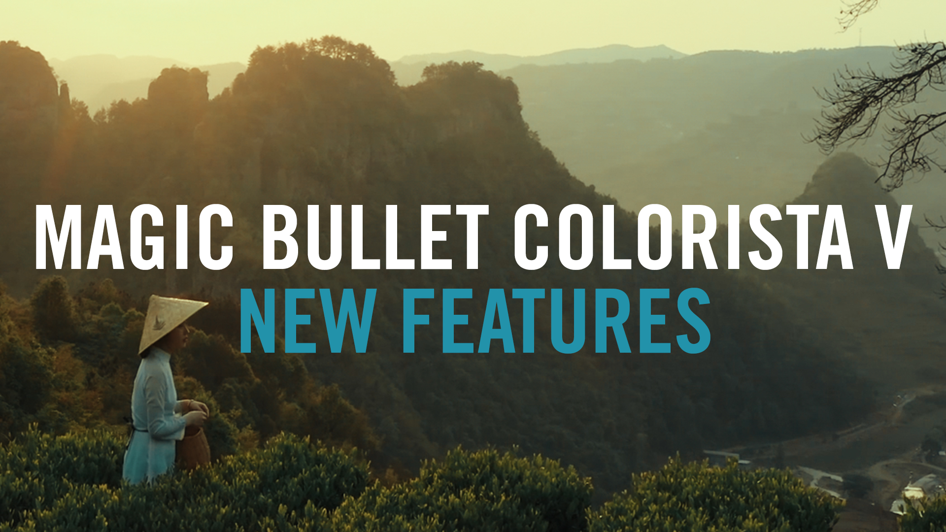 Magic Bullet Colorista V- New Features