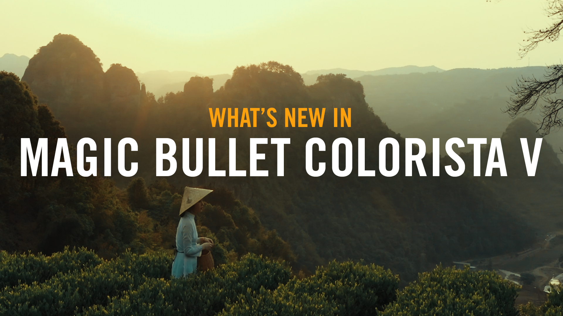 What's New with Colorista V